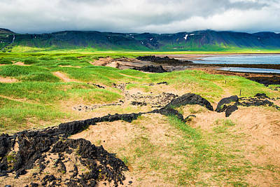 Iceland Photograph - Sand And Green Grass Iceland Coast Landscape Arnarstapi by Matthias Hauser