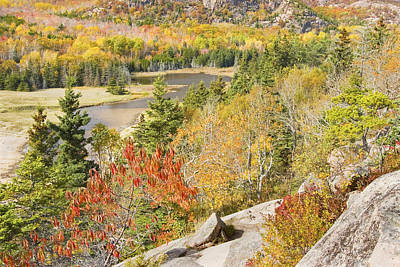Ledge Photograph - Sand Beach In Fall From Great Head Acadia National Park Photo by Keith Webber Jr