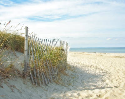 Sandwich Photograph - Sand Beach Ocean And Dunes by Brooke Ryan
