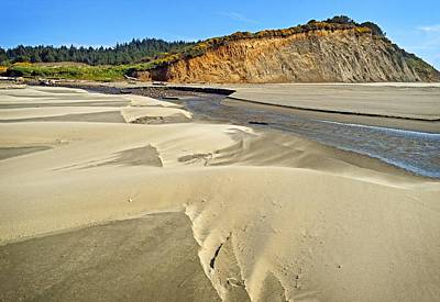 Agate Beach Oregon Photograph - Sand Dunes At Agate Beach In Oregon by Maralei Keith Nelson