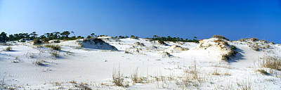 Florida State Photograph - Sand Dunes In A Desert, St. George by Panoramic Images