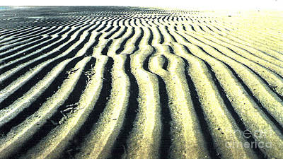 Sand Groove Print by Graham Foulkes