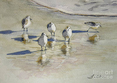 Water Reflections Painting - Sandpipers 2 Watercolor 5-13-12 Julianne Felton by Julianne Felton