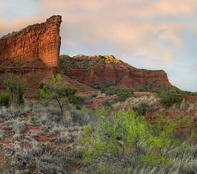 Sandstone Cliffs Caprock Canyons Texas Print by Tim Fitzharris