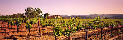 Sattui Photograph - Sattui Winery, Napa Valley, California by Panoramic Images
