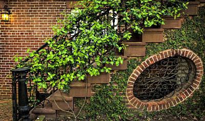 Savannah Details Print by Diana Powell