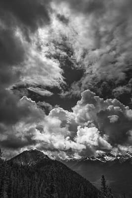 Vertical Photograph - Save The Light by Jon Glaser