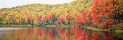 Savoy Mountain State Forest Print by Panoramic Images