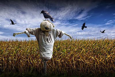 Scarecrow With Black Crows Over A Cornfield Print by Randall Nyhof