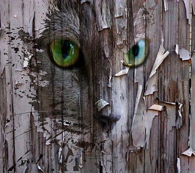 Kitty Digital Art - Scaring Fence by Yury Malkov