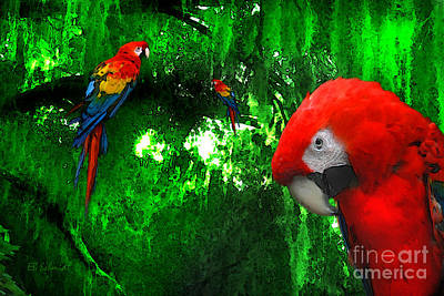 Macaw Mixed Media - Scarlet Macaws by E B Schmidt