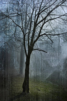 Scars Of Fog Print by Melissa Smith