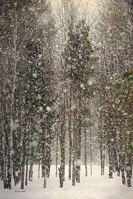 Framed Winter Snow Photograph - Scenic Snowfall by Christina Rollo
