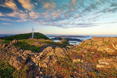 Scenic View Of Kodiak Island Print by Marion Owen