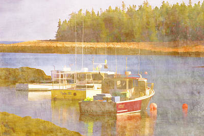 Atlantic Coast Digital Art - Schoodic Peninsula Maine by Carol Leigh
