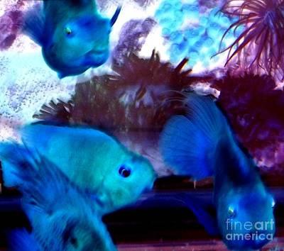 School Of Blue Fish Abstract Print by Gail Matthews