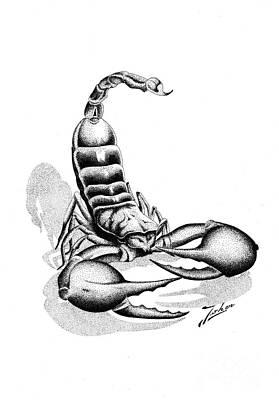 Scorpion Print by Joker Gallery