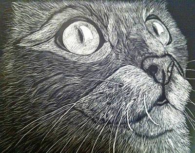 Brenda Brown Art Mixed Media - Scratch Art Kitty Cat by Brenda Brown