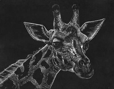Scratch Giraffe Print by Chelsea Blair