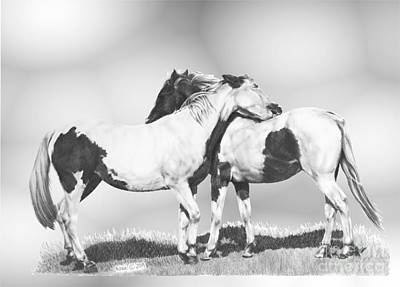 Pinto Drawing - Scratch by Marianne NANA Betts
