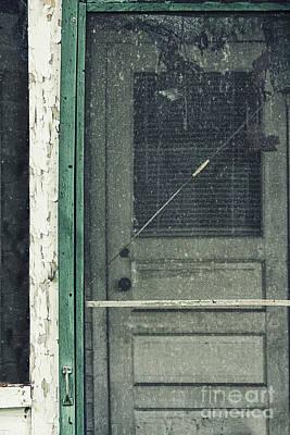 Screen Doors Photograph - Screen Door by Margie Hurwich