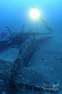 Scuba Divers Exploring Airplane Wreck Print by Sami Sarkis