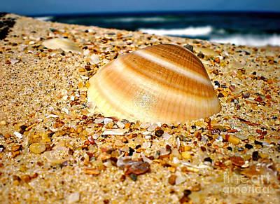 Sea Beyond The Shell Print by Kaye Menner