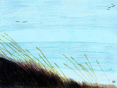 Sea Oats In The Wind Drawing Print by D Hackett