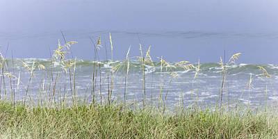 Photograph - Sea Oats Panorama 1 by Karen Stephenson