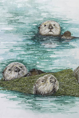 Sea Otters At Play Original by Virginia McLaren