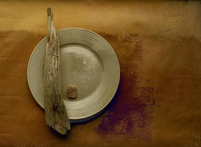 Aimelle Photograph - Sea Plate - J094091039-s01bb by Variance Collections