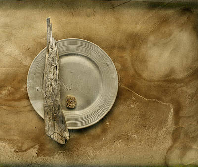 Aimelle Photograph - Sea Plate - Sp9b5b by Variance Collections