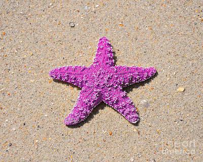 Sea Star - Pink Print by Al Powell Photography USA