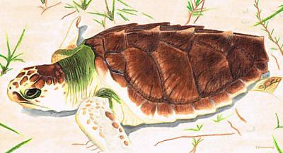Biology Painting - Sea Turtle Art By Sharon Cummings by Sharon Cummings