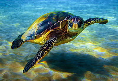 Mixed Media - Sea Turtle by Steven Peters