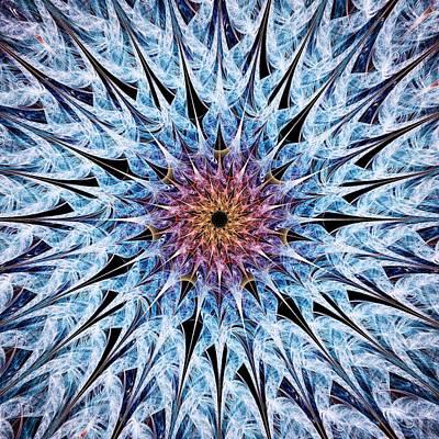 Sea Urchin Print by Anastasiya Malakhova