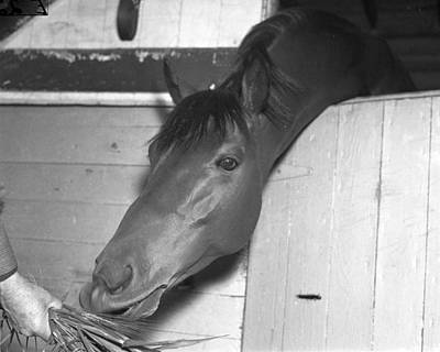 Seabiscuit Photograph - Seabiscuit Triple Crown Winner #8 by Retro Images Archive