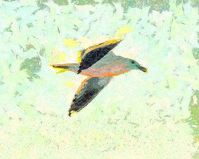 Birds Mixed Media - Seagull In Flight by Priya Ghose