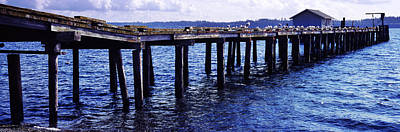 Flock Of Bird Photograph - Seagulls On A Pier, Whidbey Island by Panoramic Images