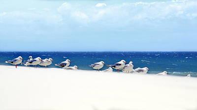 Seagulls On The Beach Print by Libby Ryding