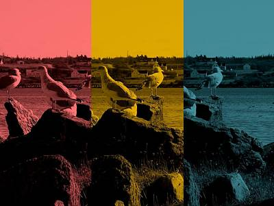 Abstract Photograph - Seagulls Starting The Day by Daryl Macintyre
