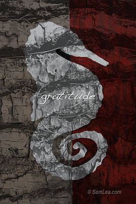 Seahorse Mixed Media - Seahorse Gratitude by Sam Lea