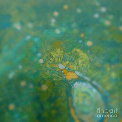Tapestries Textiles Photograph - Searching For Teal 001 by Lori Russell