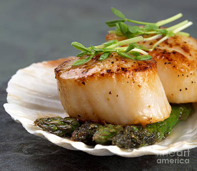 Asparagus Photograph - Seared Scallops by Jane Rix