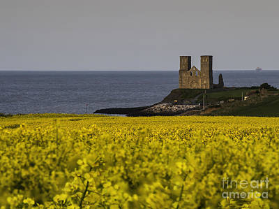 Reculver Photograph - Seas Of Yellow And Blue by Nigel Jones