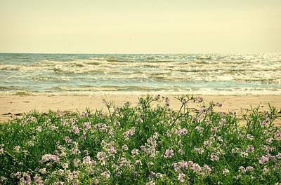 Seascape Print by Gynt