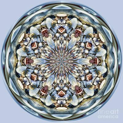 Seashell Orb Print by Cindi Ressler