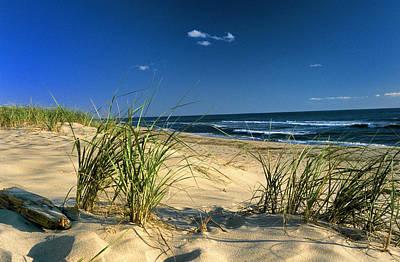 Seashore Dunes Print by William McEvoy