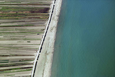 Seaside, Barletta Print by Blom ASA