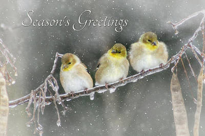 Season's Greetings Print by Lori Deiter
